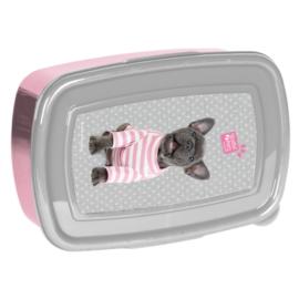 Studio Pets műanyag uzsonnás doboz - Francia bulldog (PTP-3022)